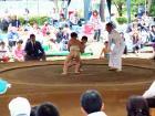 わんぱく相撲秋田ブロック大会 3